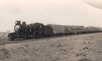 El Ferrocarril Patagónico: su pasado, su presente y su futuro