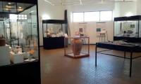 Museo Mario Brozoski: Los tesoros de la historia y restos arqueológicos de la Corbeta Swift (parte II)