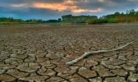 10 Ideas contra el cambio climático