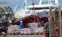 """Puerto Deseado: """"Esperando la carroza… que trae calamares"""""""