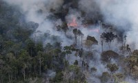 Crimen ambiental: siguen los incendios en el Amazonas