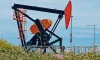 Petrolera británica avanza en proceso para la perforación de un pozo en Santa Cruz