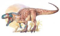 Descubren dos especies nuevas de dinosaurio en Chubut y Santa Cruz