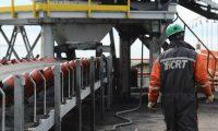 En la provincia del carbón, Caleta Olivia se calefacciona con leña traída de Río Negro