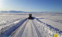 Ruralistas y gobiernos prevén importante mortandad de animales por las nevadas