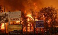 Incendios en Córdoba: ¿qué está en riesgo?