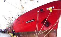 Alerta en alta mar: preocupa el aumento de contagios entre las tripulaciones de buques cargueros y pesqueros