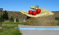 Los Antiguos, el pueblo de Santa Cruz que se modernizó con la cereza