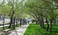 Río Gallegos: Se celebró la primavera con una jornada familiar y una entrega de certificados