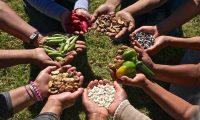 Santa Cruz suma proyectos hacia la soberanía alimentaria